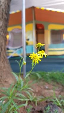Camp Corner Drakensville (27)