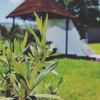 Camp Corner Drakensville (36)